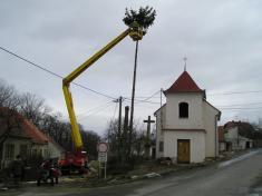 Kácení stromů u kaple